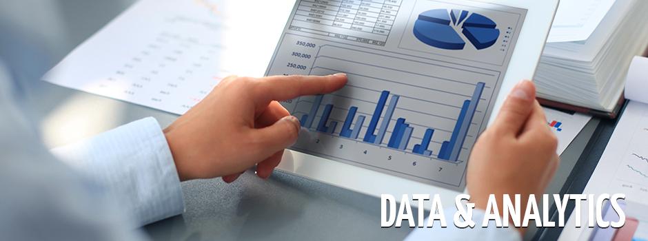Analytics Consultant